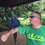 Holding Macaw