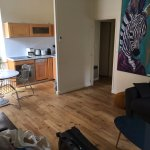 living room / kitchen/ zebra