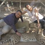 Foto de Cango Wildlife Ranch