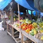 Castries Local Produce