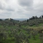 Foto di We Like Tuscany