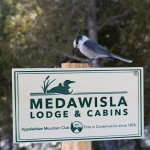 Foto de Medawisla Wilderness Lodge and Cabins