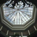 Hermosa clarabolla en el Lobby