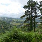 Views towards Dartmoor