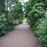 Royal Botanic Garden Edinburgh Foto
