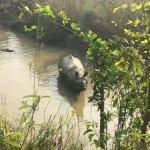 Foto de Hotel Rhino Land