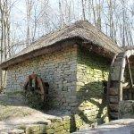 Foto de Pirogovo Open-Air Museum