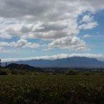 Finca las Nubes - Bodega Jose L. Mounier Foto