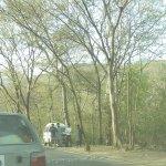 Photo of Margalla Hills