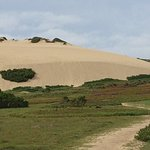 Amazing sand dunes that have to been seen to be believed.