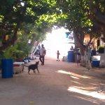 Street on Gran Roque