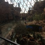 Henry Doorly Zoo Foto