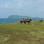 Horseback Riding In St.Lucia - Heading back to the stable after riding our horses on the beach