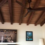 Main living area ceiling in Bungalow