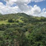 Canopy Adventure Zip Line Tours