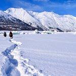 Trudging through the gorgeous fresh snow