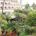 Marriott's Maui Ocean Club  - Lahaina & Napili Towers Foto