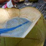 Fresh young coconut (buko) in Cowrie Island.