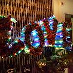 20161202_205023-02_large.jpg