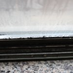 dead bugs/dirty window track