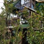 Foto de Treehouse Skye