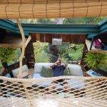 صورة فوتوغرافية لـ Treehouse Skye