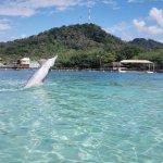 Photo of Mayan Princess Beach & Dive Resort