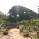 Photo de Lalbagh Botanical Garden