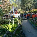 company-garden_large.jpg