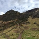 The view from Hollyrood park