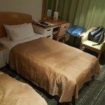 Shinagawa Prince Hotel Tokyo Foto