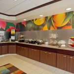 Foto de Fairfield Inn & Suites Detroit Metro Airport Romulus