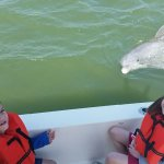 Hungry Dolphin (kids named him Squirt)