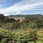 Photo of Horton Plains National Park