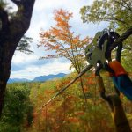 Canopy Ridge Farm ziplines in autumn