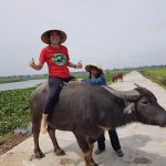 Photo de Tra Que Water Wheel