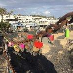 Foto de TUI Family Life Flamingo Beach Resort