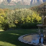 Photo de Vineyard Hotel