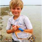 Nothing gets kids more excited than hunting for crabs.