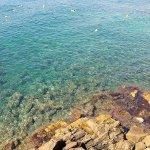 Photo de Lloret Beach