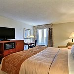 Comfort Inn & Suites University South Foto