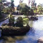 Photo de Monte Palace Tropical Garden