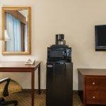 Foto de Holiday Inn Express Hotel & Suites Webster