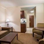 Holiday Inn Express Hotel & Suites Webster Foto