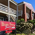 ‪Born Free Suites by the Sea‬