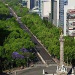 Foto de Novotel Mexico Santa Fe