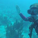 Photo de Captain's Corner Dive Center