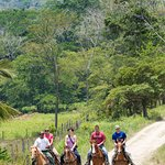 Horseback riding in the Mountain Pine Ridge