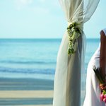 Beach Wedding - Bride