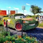 Cars Topiary